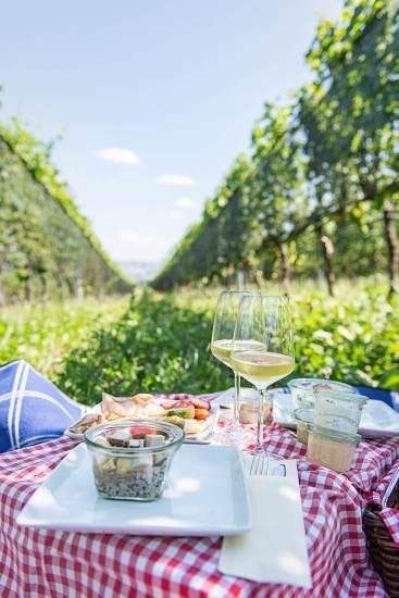 Österreich Wein Picknick_1845