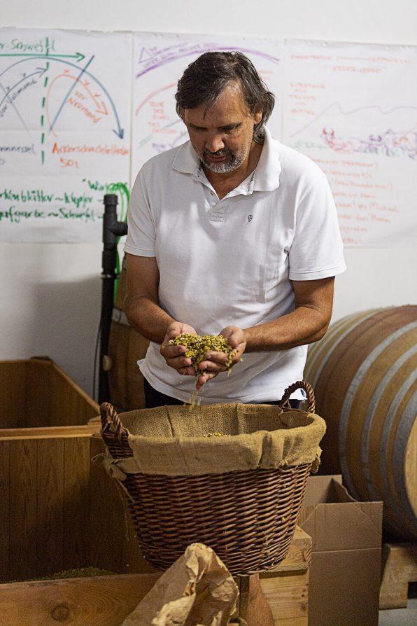 Österreich Wein Weingut Fritsch_1407
