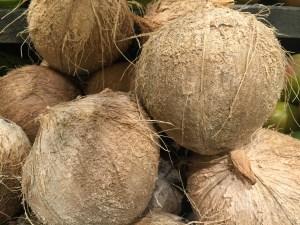 Coconuts - CookingCoOp.com
