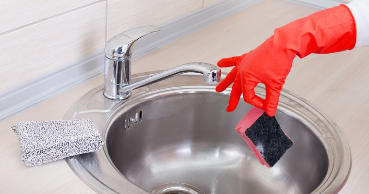 The dirtiest item in the kitchen: dishwasher sponge