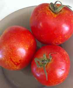 three ripe fresh tomatoes with yellow speckles