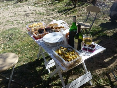 gourmet picnic and wine