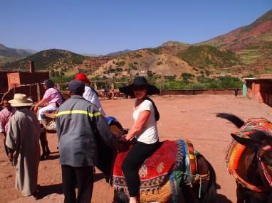 Donkey riding into the Atlas Mountains