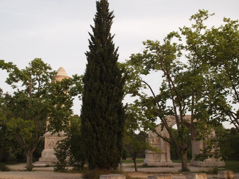 Les Antiques and the beautiful cypresses