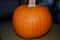 pumpkin 1-1