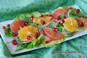 citrus salad with pomegranate (28)