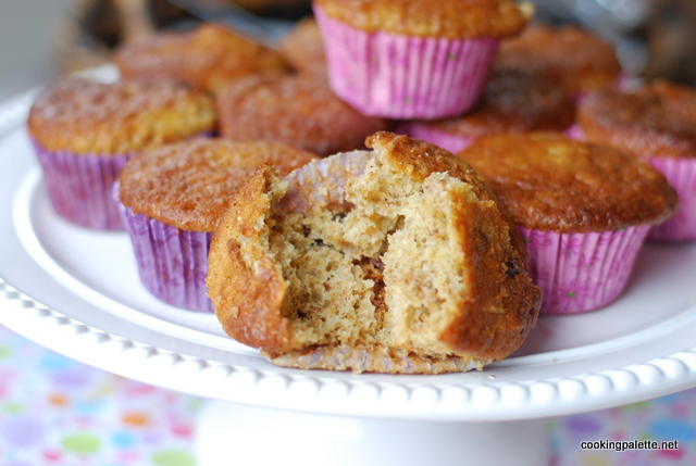muffins with bran or granola (15)