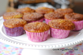 muffins with bran or granola (16)