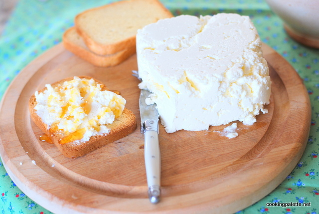 homemade cream cheese (25)