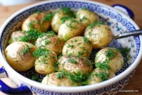 young potato (4)