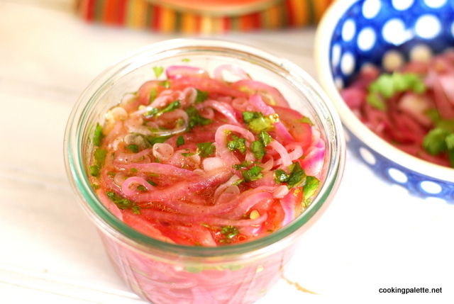 pickled red onion (15)