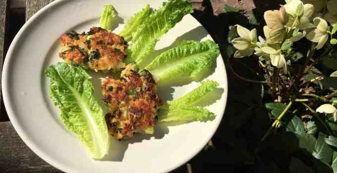 Shrimp Cakes and Full Disclosure #2