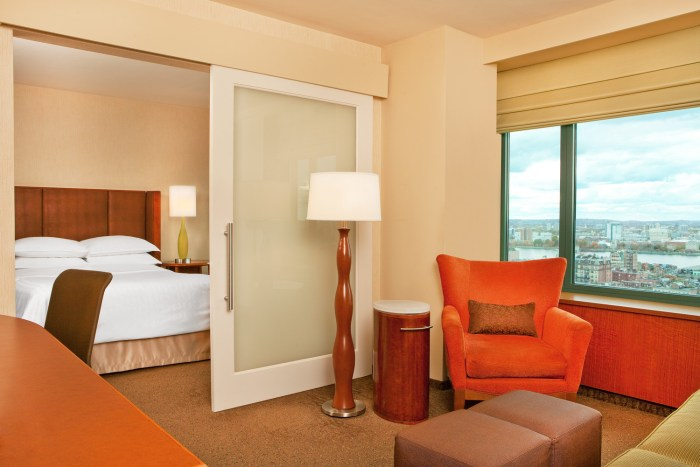 she430gr-160093-Junior Suite with Charles River View
