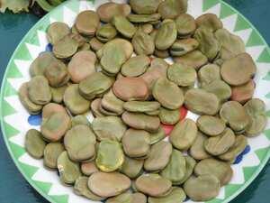 Fava Rica Garlic Recipe