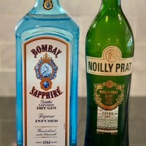 Gin and Vermouth