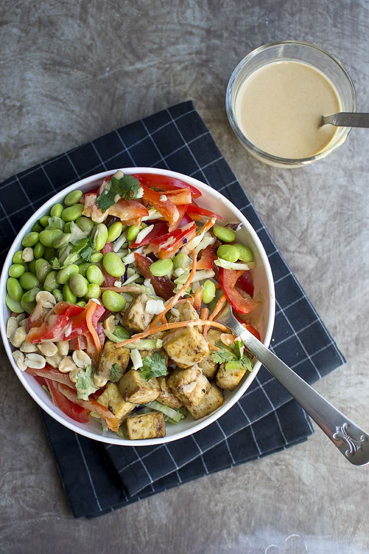Broccoli and Tofu Salad with Peanut dressing