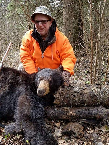 black bear hunt - image