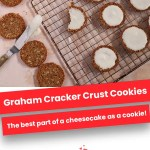 Graham Cracker Crust Cookies