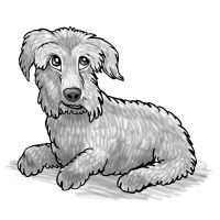 Pets Hand Drawn Caricatures in Black and White