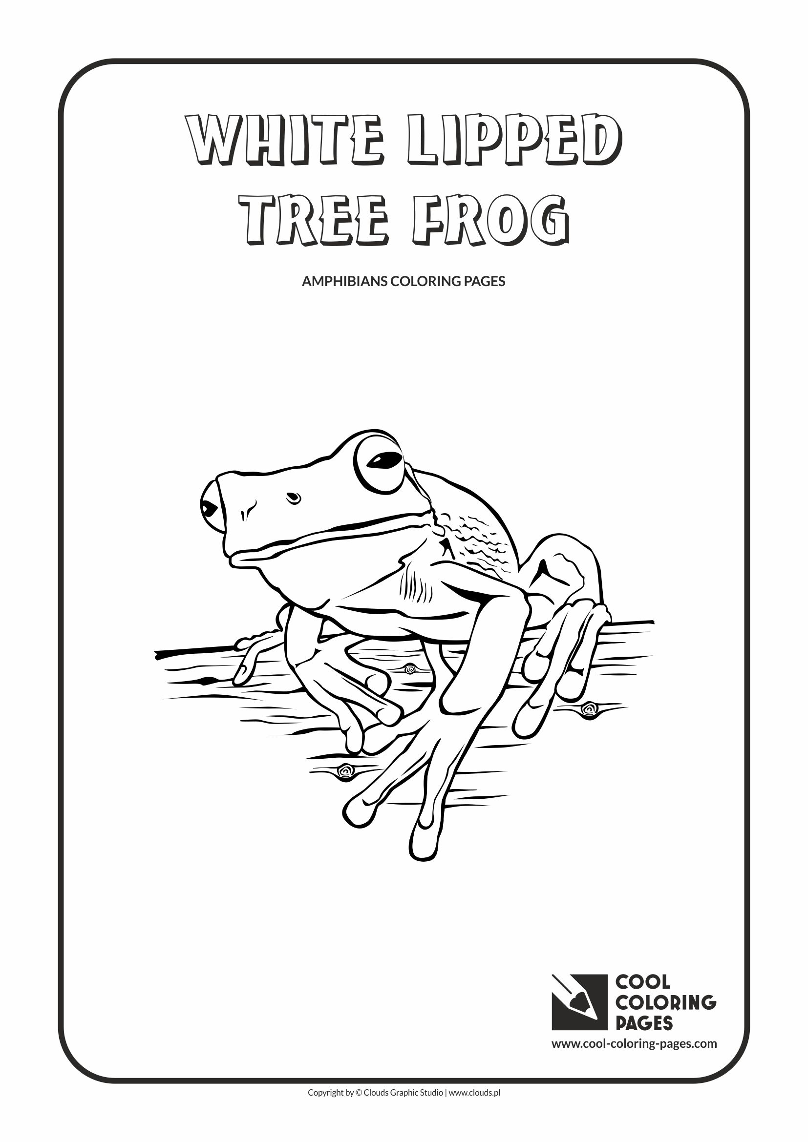 Snakes national geographic coloring sheets coloring pages for National geographic coloring pages