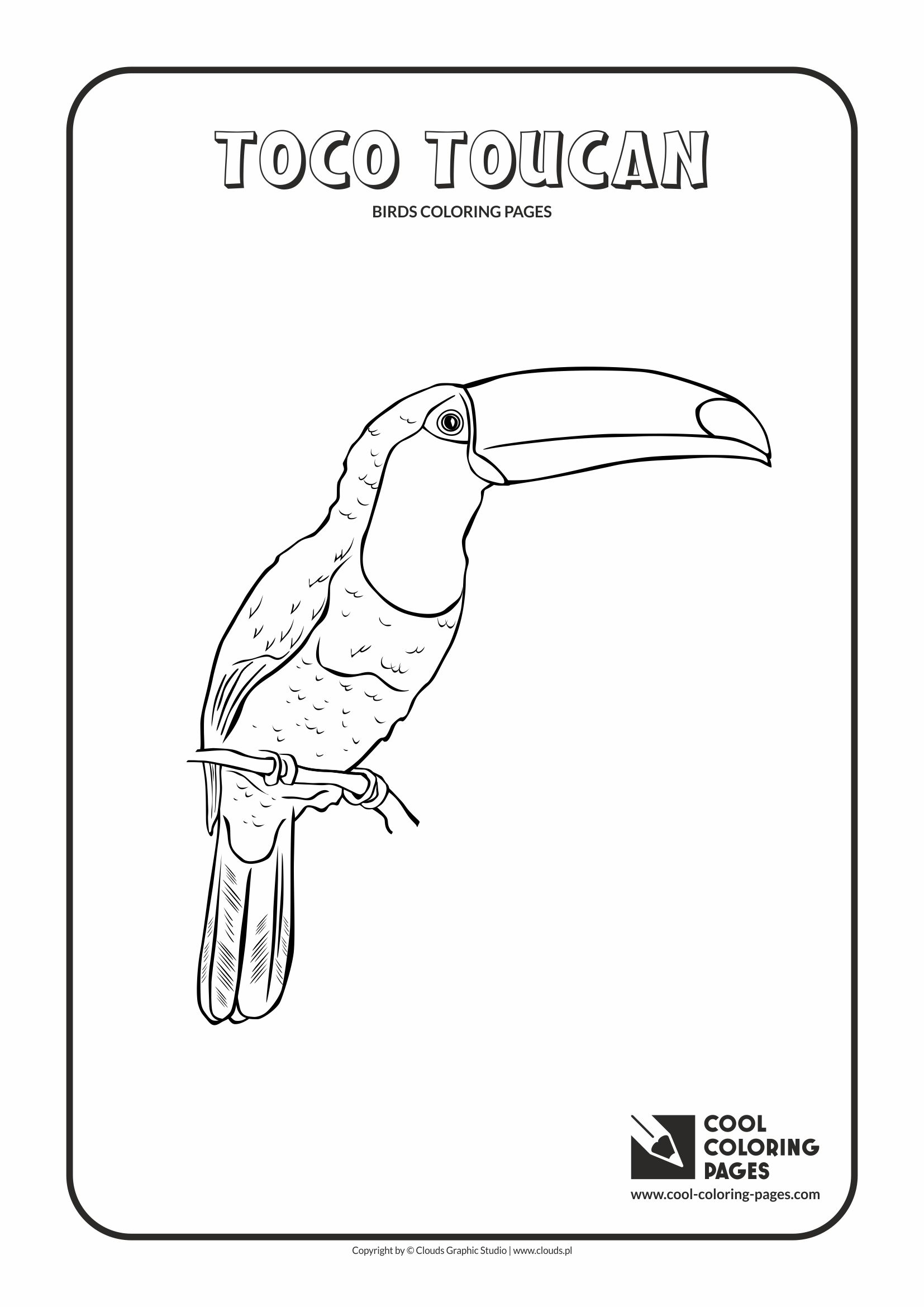 toucan coloring pages toucan coloring pages toucan coloring page