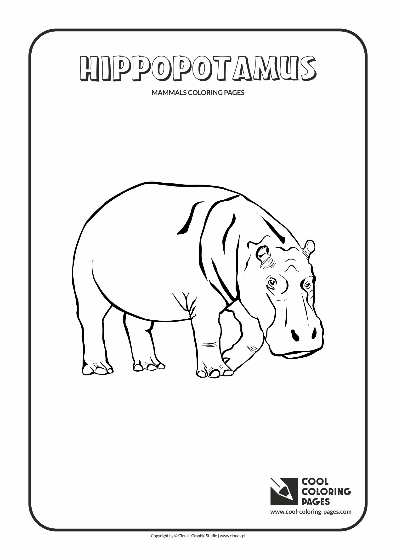 Hippopotamus hippo coloring page animals town animals color - Cool Coloring Pages Animals Hippopotamus Coloring Page With