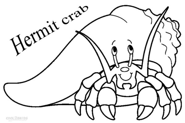 hermit crab coloring page # 5