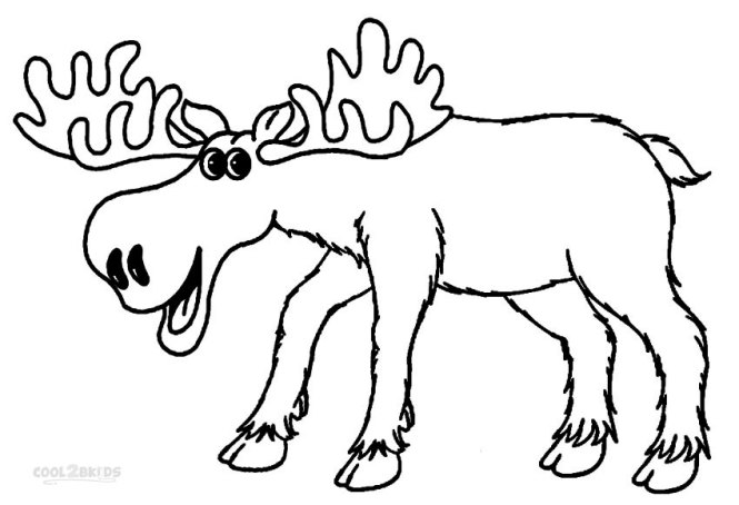 printable moose coloring pages for kids cool2bkids - Moose Coloring Pages