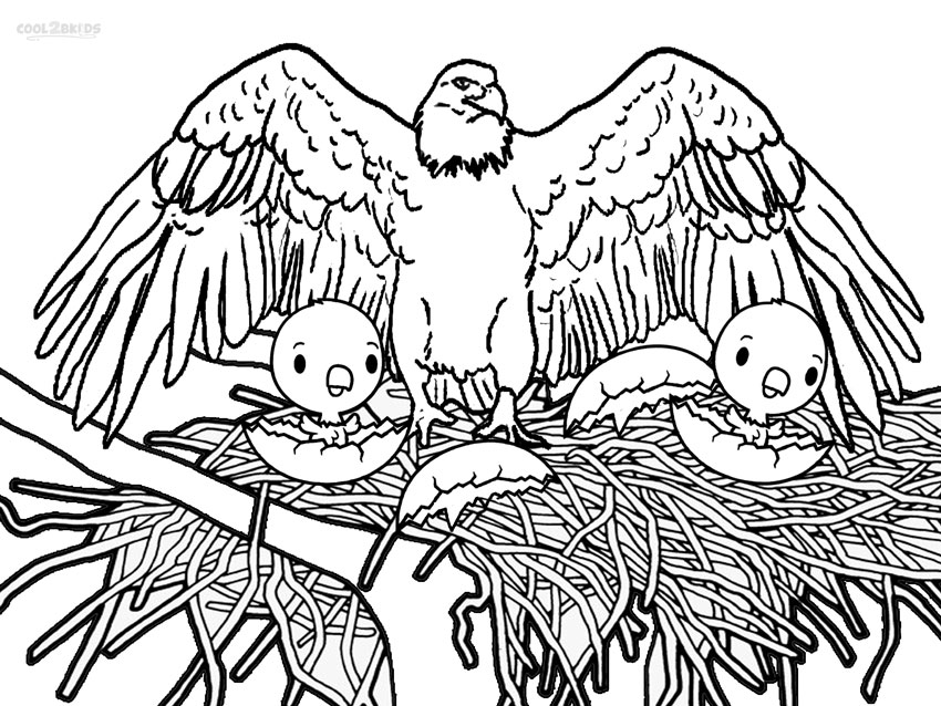 Printable Bald Eagle Coloring Pages For Kids