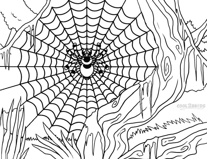 spider web coloring page spider web coloring pages
