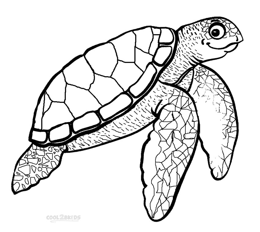 Leatherback Sea Turtle coloring page - Animals Town - Free ... | 761x850