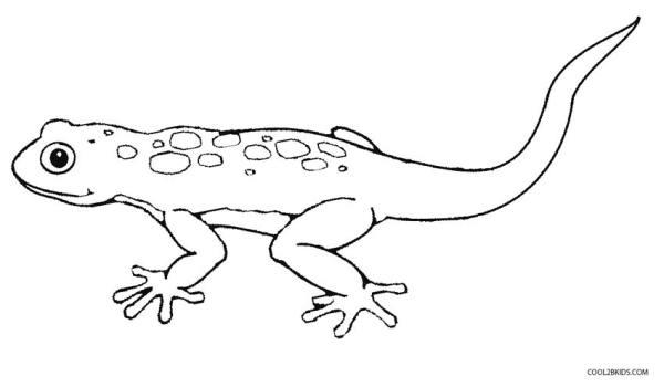 lizard coloring page # 5