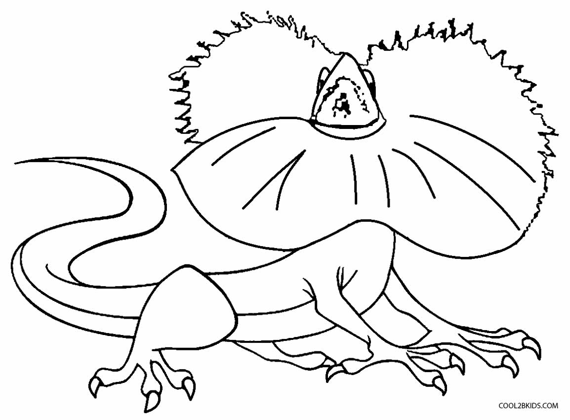 Printable Lizard Coloring Pages For Kids