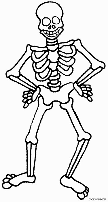 skeleton coloring together with skeleton bones coloring pages moreover