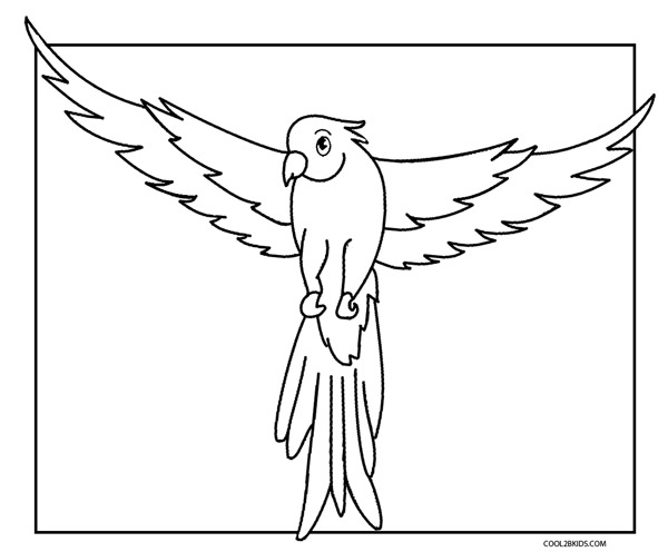 parrot coloring pages 2
