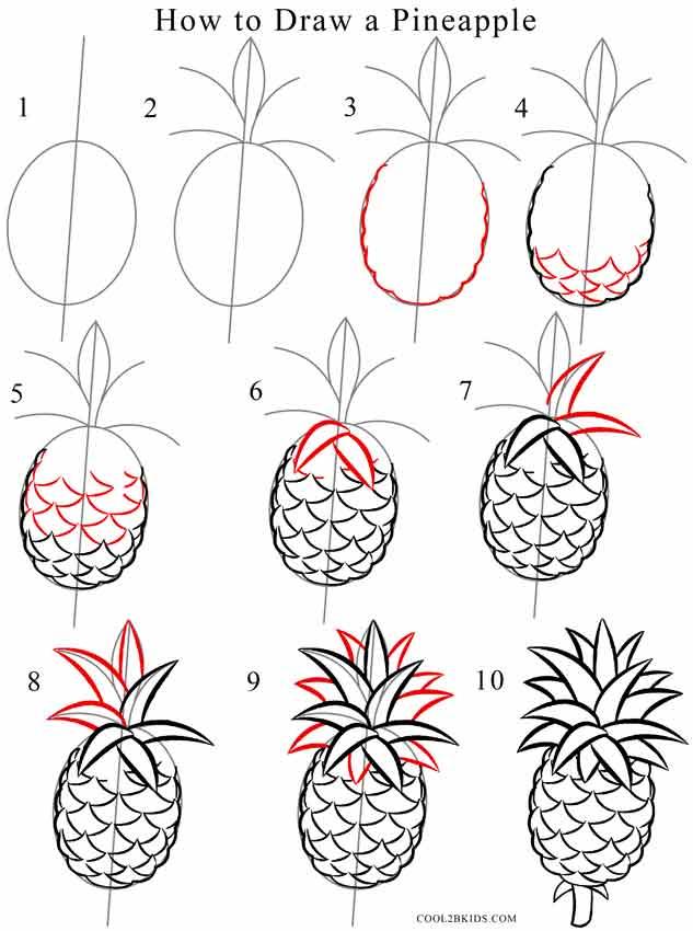 Pineapple Easy Drawing