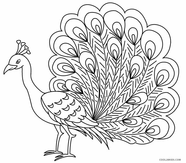 peacock coloring pages for kids cool2bkids how to draw baby yoshi