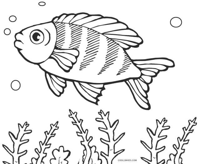 Free Printable Fish Coloring Pages For Kids Cool30bKids - Coloring