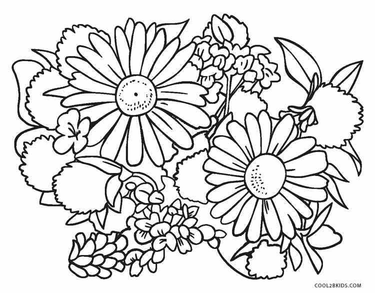 Free Printable Flower Coloring Pages For Kids | Cool2bKids | free printable coloring pages for adults flowers