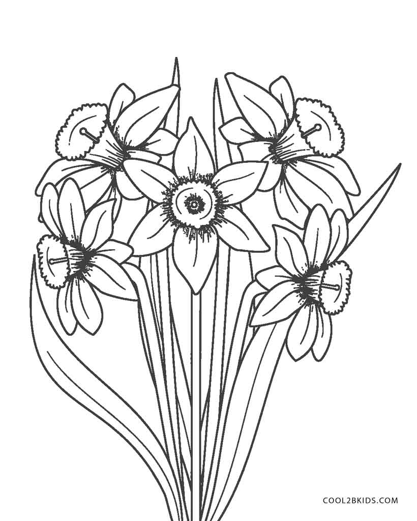 Free Printable Flower Coloring Pages For Kids   Cool2bKids   free printable coloring sheets flowers