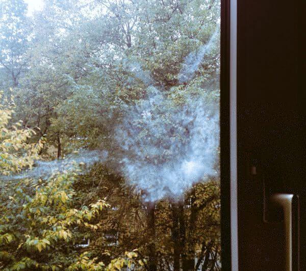 Taubenklecks am Fenster