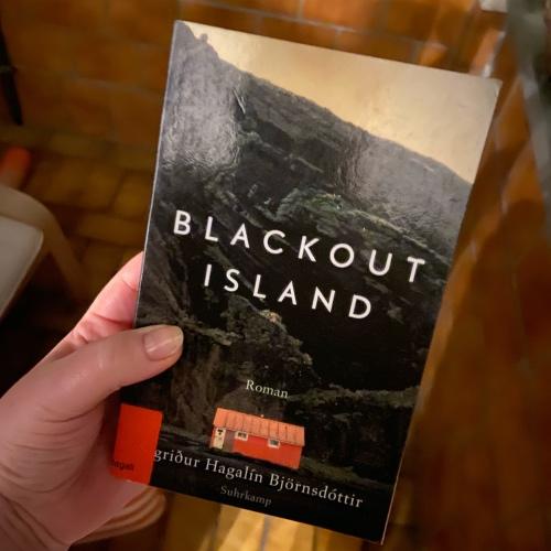 Buch: Blackout Island