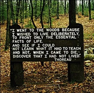 In a twist of irony, Henry David Thoreau's book Walden has been turned into a quiet, reflective game.