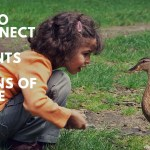Reconnecting Your Students to the Lessons of Nature