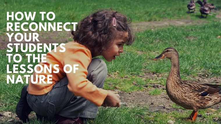 How to reconnect students to nature