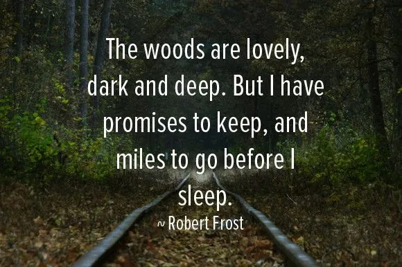 Robert Frost look deep in the woods nature learning