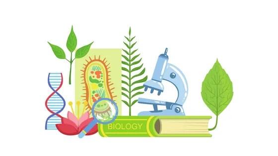 Science Kits for Haiti