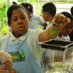 This Amazing South Bronx School Grows 50,000 Pounds of Vegetables a Year