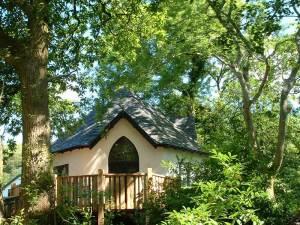 treehouse-exterior-summer