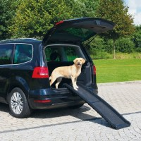 Rampe für Hund, Auto
